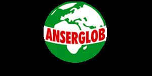 anserglobe 300x261 300x150 - ПАРТНЕРИ