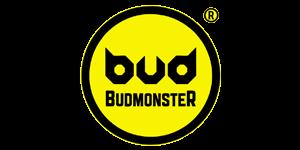 budmonster icon 300x150 - ПАРТНЕРИ
