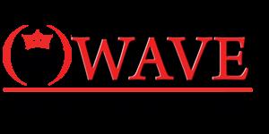 wave 300x150 - ПАРТНЕРИ