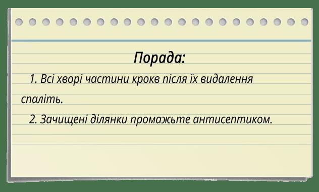 sovet new2 ukr - Ремонт даху приватного будинку