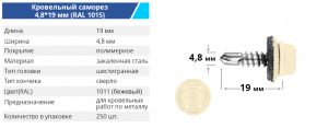 4 8 19 1015 300x117 - TM BUDMONSTER