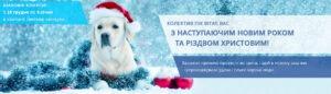 PIK новый год главная 1900х550 ukr 300x86 - TM BUDMONSTER