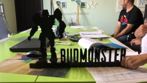 micro image 300x169 - TM BUDMONSTER