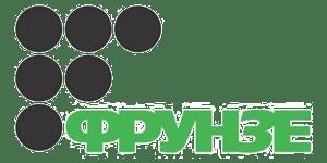 frunze 300x150 1 - TM BUDMONSTER